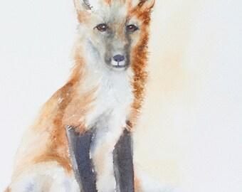 baby Fox painting of Fox art PRINT of fox print fox kit painting fox wall hanging fox kit woodland nursery print baby animal