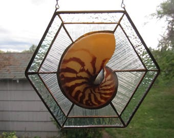 Natural Sliced Nautilus in Iridized Glass