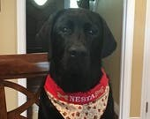 Personalized Pet Bandana embroidered with your dog's name - fabric filled with bones, paws, and hearts - Slips over collar