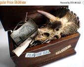 ON SALE Miniature Dino Skull