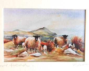 "Vintage Dierdre Sprott Watercolor Print ""Torr Head"" Ireland - Irish Artist - Matted 5 x 7 Fine Photographic Print, Pencil Signed - Sheep"