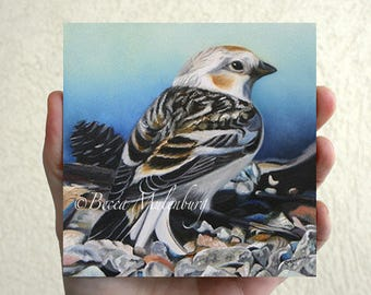 NEW! Snow Bunting Original oil painting miniature art wildlife fine art duluth