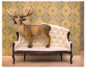 Deer print, woodland decor, deer art, antlers - Barely Domestic