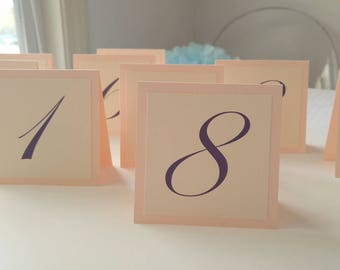 Wedding Table Numbers Small Tented Design, Table Number Idea, Elegant Wedding Table Numbers, Bacherolette Shower Table Numbers