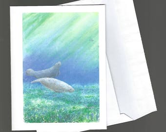 Note Card manatee sea cow seacow nature wildlife by artist bowman blank notecard portrait Quiet Morning 4x6 greeting