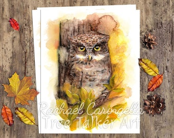 Watercolor Owl - Autumn Owl - Watercolor by Rachael Caringella
