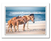 Wild Horse Note Card with Envelope, Seascape Equestrian Photo Card, Assateague Island Pony, Blank Photo Card
