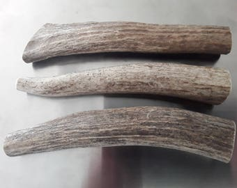 3 natural real elk antler pieces bone crafts decor real rustic antlers gift