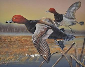 Redhead Ducks Original Painting by Doug Walpus,Birds, Waterfowl, Duck, Acrylic, Game Bird, Hunting, Wall Decor, Wall Art,Office Decor, Gifts
