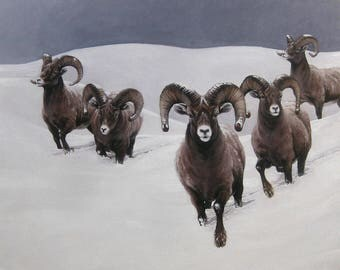 Original wildlife art animal art western art Bighorn Sheep original oil painting by H Irvine