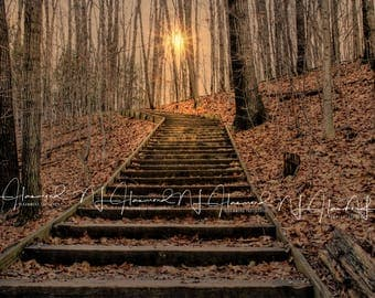 Fall/Autumn Digital background/backdrop stairs, woods, leaves, trees, sunset, sunflare photoshop digital download