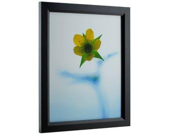 "Craig Frames, 18x24 Inch Black Picture Frame, Economy 1"" Wide (7171610BK1824)"