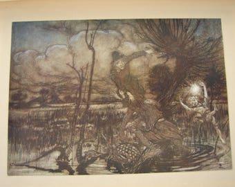 1920 Arthur Rackham fairies,Midsummer Night's Dream,tipped-in book plate,print. Misled Night Wanderers