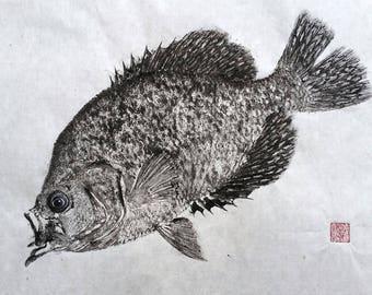 BLACK CRAPPIE Original Gyotaku - traditional Japanese fish art by dowaito