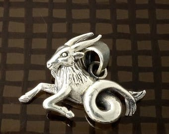 ON SALE Sterling Silver Capricorn Zodiac Pendant Sea-Goat Sign, Free Shipping Worldwide!