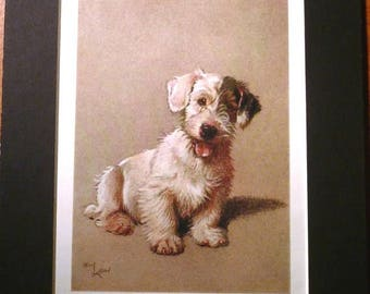 SALE SEALYHAM TERRIER Dog Signed mounted 1928 Cecil Aldin Sealyham terrier dog plate print Christmas gift Thanksgiving present Unique presen