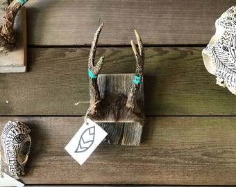 Symbols on a set of small deer antlers