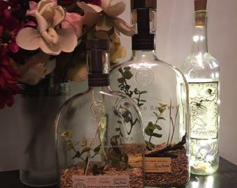 Liquor bottle barley terrarium - KIT OR PICKUP