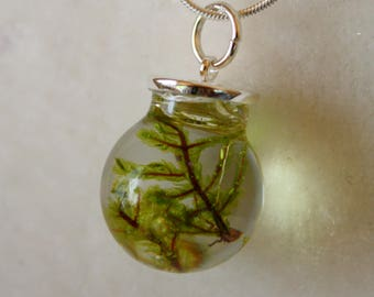 Forest moss necklace, moss necklace, green necklace, moss pendant, forest pendant, botanical pendant, nature necklace, nature pendant