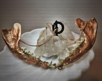 Bone/ Taxidermy  / Necklace / Copper / Electroformed / Oddity /Antique/ Vicotrian