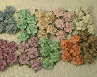 50 Mixed Rainbow Pastel Mulberry Small Paper Flowers,