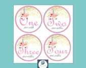 Baby Milestones, Baby Girl Month Stickers, Monthly Baby Stickers, Gift for New Mom, Milestone Stickers, Baby Shower Gift, Unicorn, Pink Gold