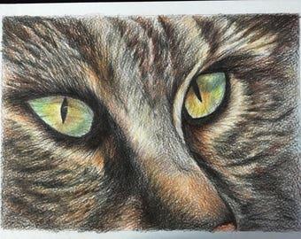 Spirit animal charcoal drawing