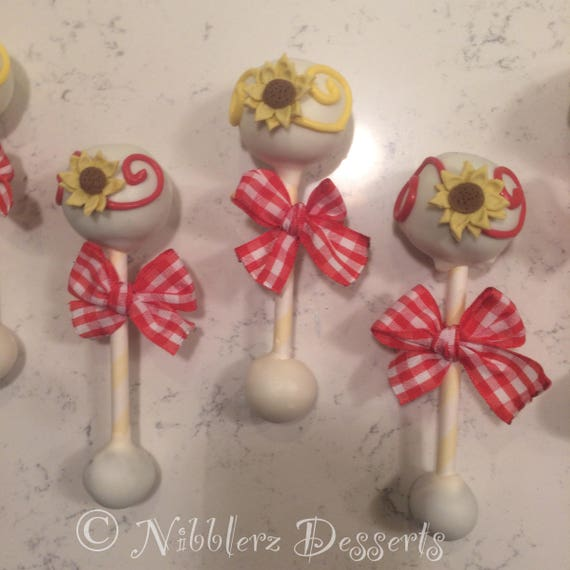 12 Country Picnic Baby Rattle Cake Pops Baby Shower By Nibblerz