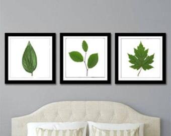 Green Leaves Print | Set of Three | Instant Download | Digital Print | Wall Art | Home Decor | Nature Art