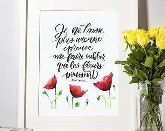 Affiche - Les fleurs poussent