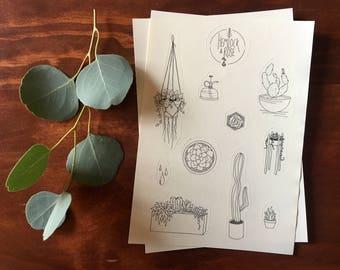 Succulent Sticker Set (includes 2 Sheets)