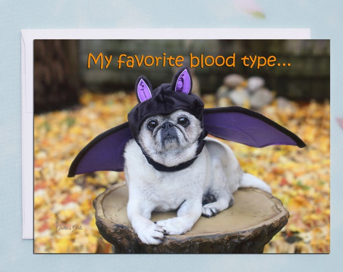 Box of 10 Halloween Cards Funny - My Favorite Blood Type - 5x7