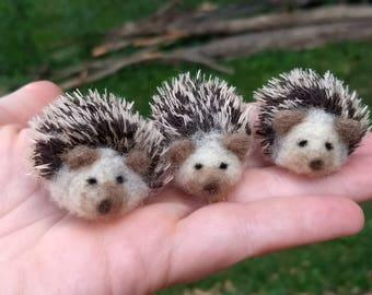 Mini Hedgehogs