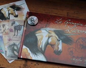 """fantasy book """"the book of unicorns"""""""