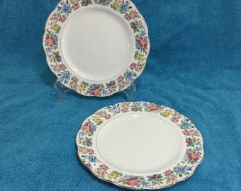 Roslyn Country Ramble Bone China England Floral Side Plates Set of 2 Tea Plates
