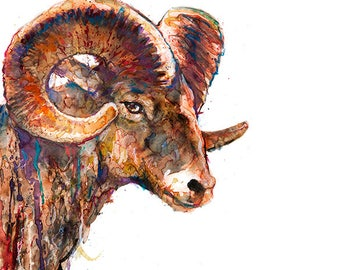 Watercolor animal painting ram print, watercolor painting print, watercolor animal art, ram art, watercolor decor, ram illustration  - R24