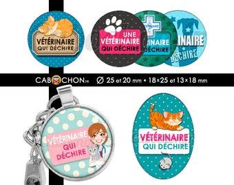 Vétérinaire qui déchire • 60 Images Digitales RONDES 25 et 20 OVALES 18x25 et 13x18 animaux chat chien véto cabinet chaton