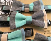 Pastel Stripes Bow Tie and Collar