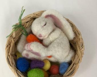 Sleeping bunny in basket
