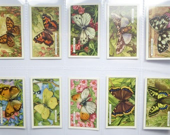 Gallaher Ltd Cigarette cards - Butterflies and Moths - full set of 48 cards