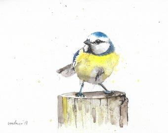 Bluetit on a stump - Original pen & ink drawing, watercolour painting, A4 Bird illustration gift, watercolor finches, Blue tit, garden birds