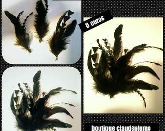 Rooster feathers 6 pegs for hats