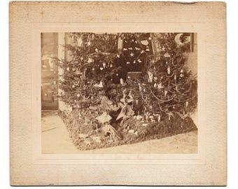 1897 Christmas Tree Putz Photograph Original
