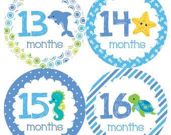 Under The Sea Animals Monthly Onesie Stickers Year 2 - Second Year 13 to 24 months Boys Girls Neutral