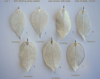 SALE. Natural Leaf, Leaf Pendant, Electroplated 925 Sterling Silver, Plated Natural Real Leaf. Sale by One & wholesale 25 leaves