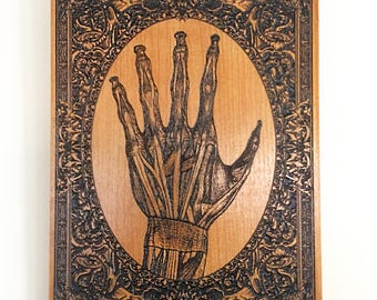 Human Hand Anatomical Art Etched on Wood, Doctor Gift, Curiosities Wall Decoration, Vintage Medical Drawing, Mini Under 50 Dollars Gift