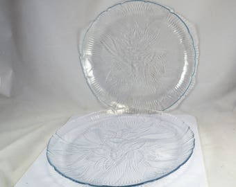 2 France Arcoroc Canterbury Dinner Plates - Clear Glass Crocus Flower in Relief - 10 3/4 Inch