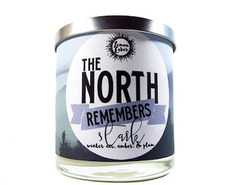 The North Remembers - Bookish Candle - 9oz Wood or Double Wick Soy Candle - LemonCakes Candle Co - Winter Air, Plum, Amber, Vanilla