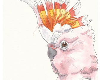 Pink cockatoo print | Major Mitchell print | gift for little girl |Girl room wall decor | Wall art print | watercolour wall art | bird print