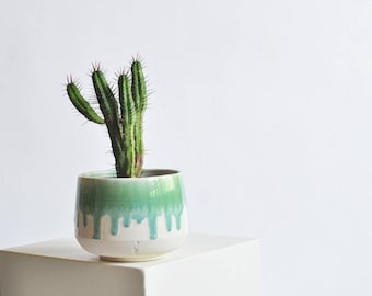 5 Inch Planter - Green Drip - Made to Order